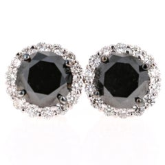 6.30 Carat Black Diamond Stud Earrings 14 Karat White Gold