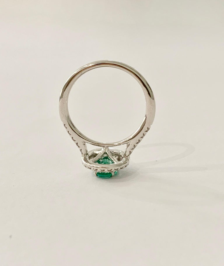 .66 Carat AAAA Oval Emerald Set in Double Diamond Halo Ring in 18ct White Gold For Sale 1