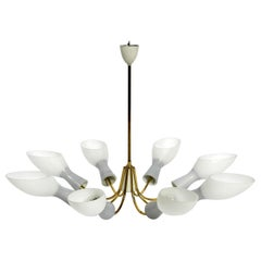 8-Armed Extra Large Midcentury Brass Chandelier with Diabolo Opal Glass Shades