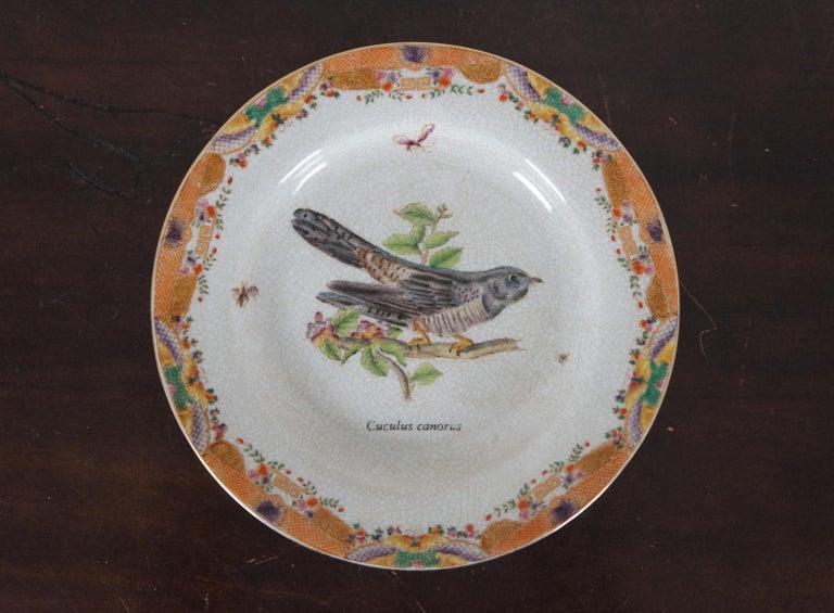 20th Century 8 Decorative Antiqued Porcelain Bird Plates Wong Lee Ornithology For Sale