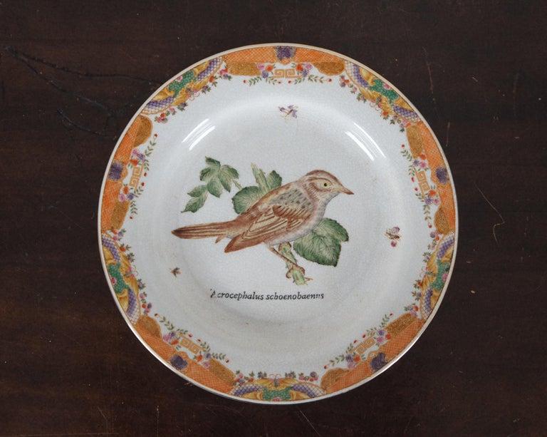 8 Decorative Antiqued Porcelain Bird Plates Wong Lee Ornithology For Sale 3