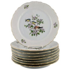 "8 Royal Copenhagen ""Spring"" Porcelain Dinner Plates with Motifs of Birds"