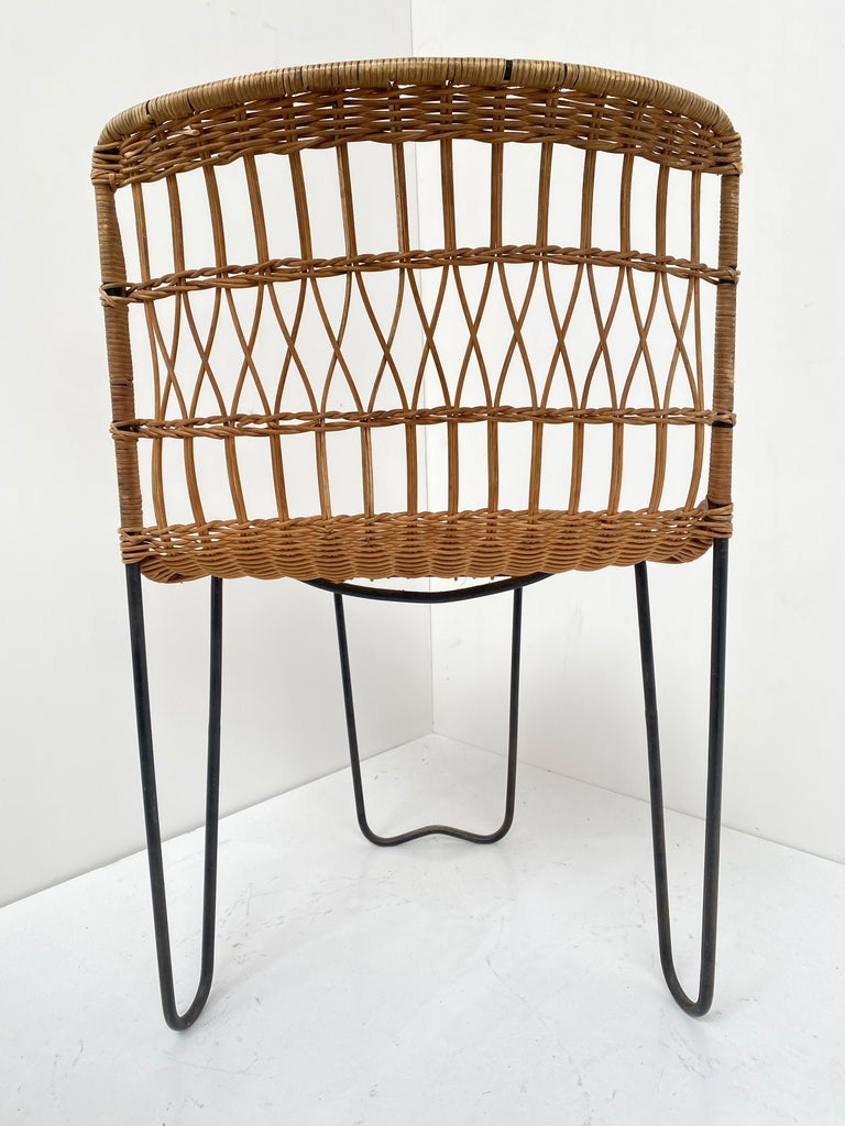 8 Sculptural Form 'Oro' Dining Chairs by Raoul Guys, 1951, Airborne, France For Sale 8