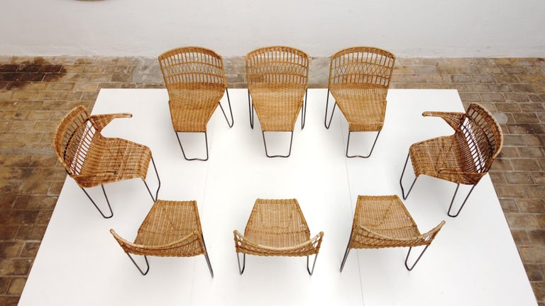 French 8 Sculptural Form 'Oro' Dining Chairs by Raoul Guys, 1951, Airborne, France For Sale