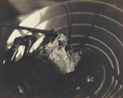 Untitled (Lobster On A Plate), c. 1925