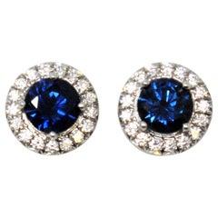 Tiffany & Co. Soleste Blue Sapphire and Diamond Halo Stud Earrings Platinum