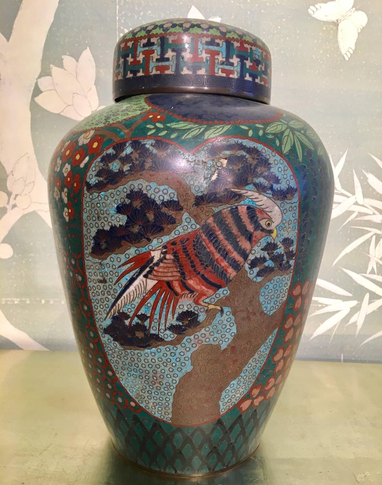 A large Japanese 19th century lidded cloisonné jar with panels of design featuring owl, irises and hawk.