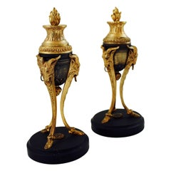 19th Century Pair of French Gilded Bronze Cassolettes