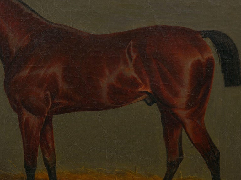"""""""A Bay Racehorse in Stable"""" '1832' Antique English Painting by James Loder For Sale 7"""