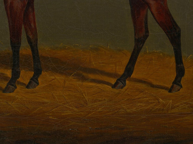 """""""A Bay Racehorse in Stable"""" '1832' Antique English Painting by James Loder For Sale 8"""