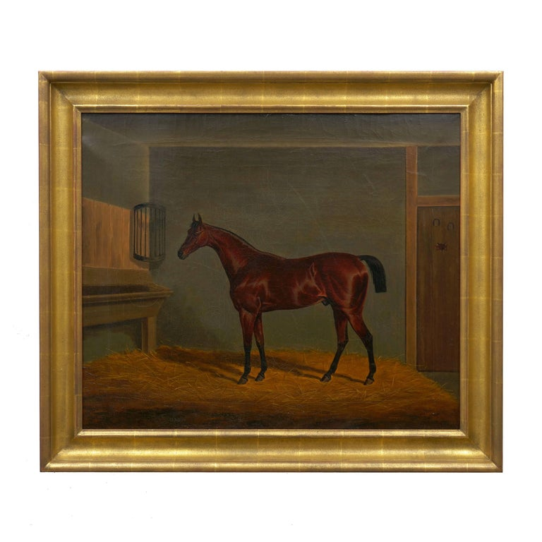 A fine equestrian scene of a handsome brown racehorse depicted in a well-lit stable interior, the lighting of the scene is particularly interesting with shadows cast behind the proud animal translucent against the golden hay before ghosting against