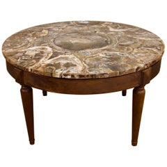 Circular Petrified Wood Low, Coffee Table