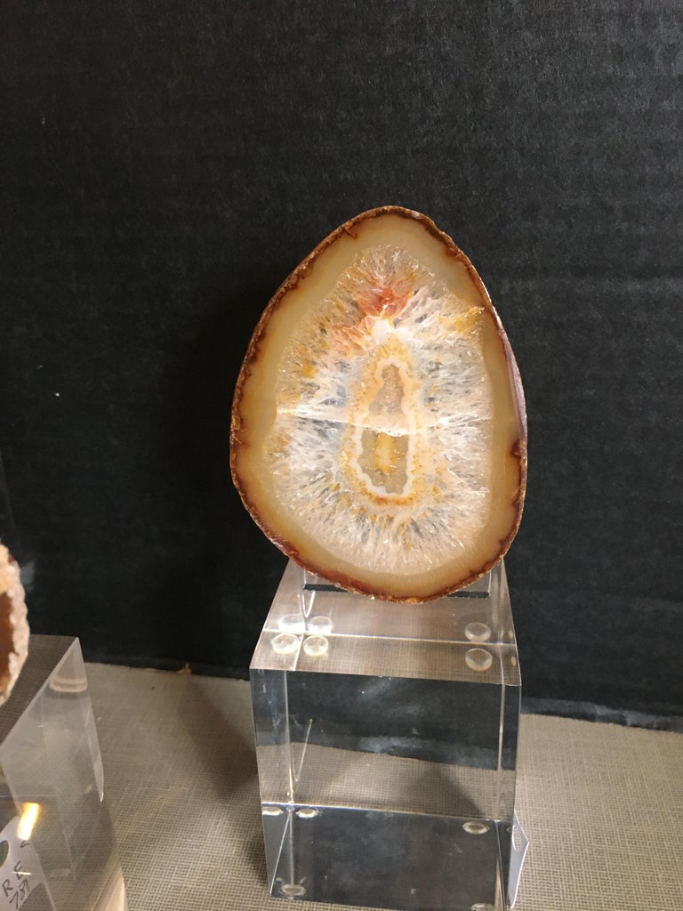 20th Century Collection of Agate Slices Mounted on Lucite For Sale