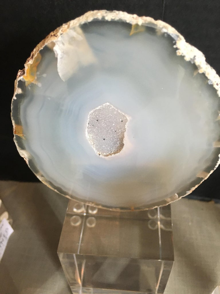Collection of Agate Slices Mounted on Lucite For Sale 2