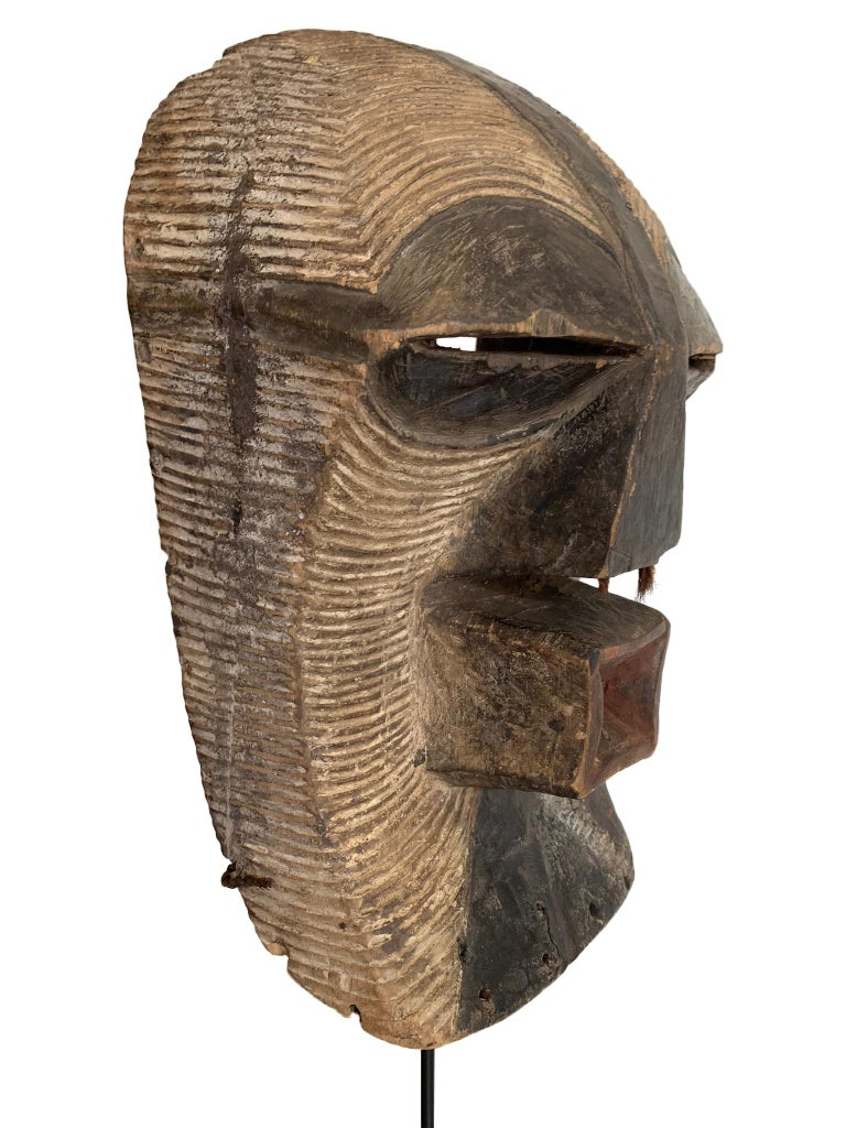 A female Songye Kifwebe hand carved wooden ceremonial mask. The wooden mask is carved with geometric lines on the face and head which are whitened with pigment and darkened on the large ridged nose and eyes, with red pigment around the mouth, the