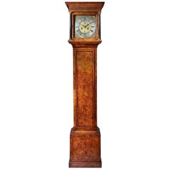 Fine 18th Century Queen Anne Burr Walnut Eight-Day Longcase Clock