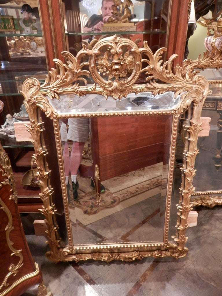 A beautiful pair of 19th century finely carved French gilt carved Louis XV mirrors. Double beveled with fine carved flowers and acanthus leaf design. Beaded trim. All original.