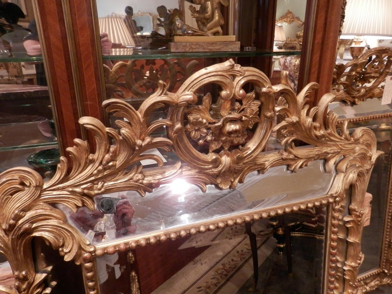 Hand-Carved Fine Pair of 19th Century French Louis XV Gilt Carved Mirrors For Sale