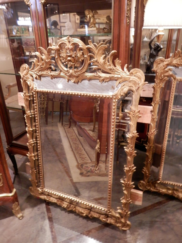 Giltwood Fine Pair of 19th Century French Louis XV Gilt Carved Mirrors For Sale