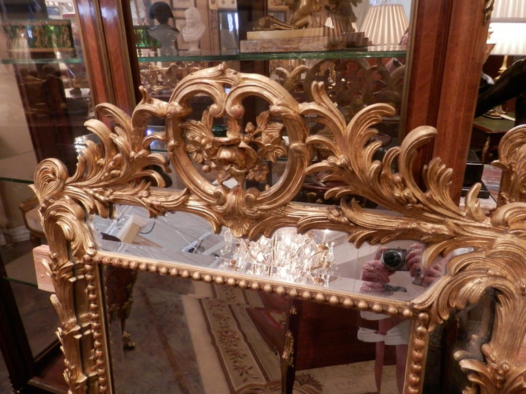 Fine Pair of 19th Century French Louis XV Gilt Carved Mirrors For Sale 1