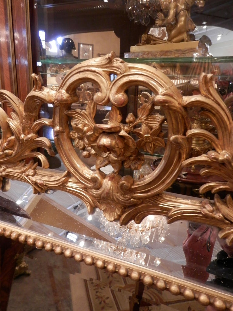 Fine Pair of 19th Century French Louis XV Gilt Carved Mirrors For Sale 2