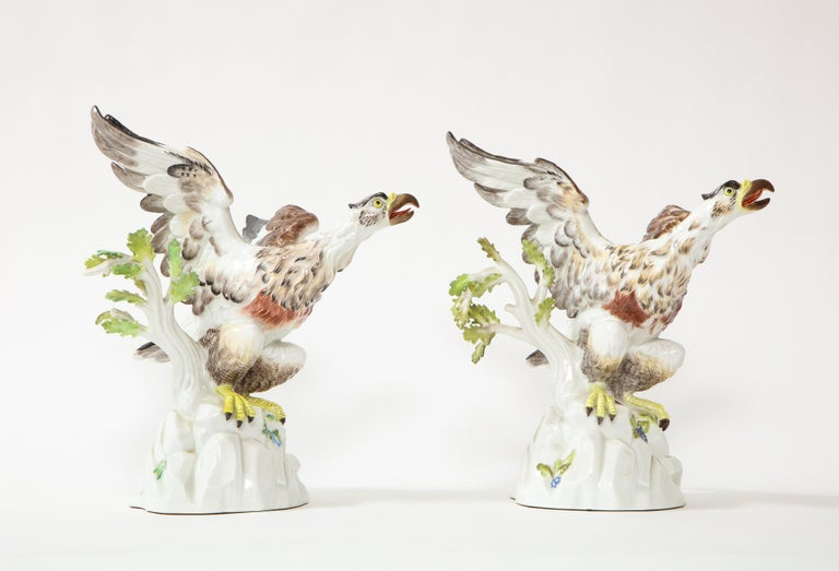 Rococo Fine Pair of Meissen Porcelain Models of Eagles Resting on Branches For Sale