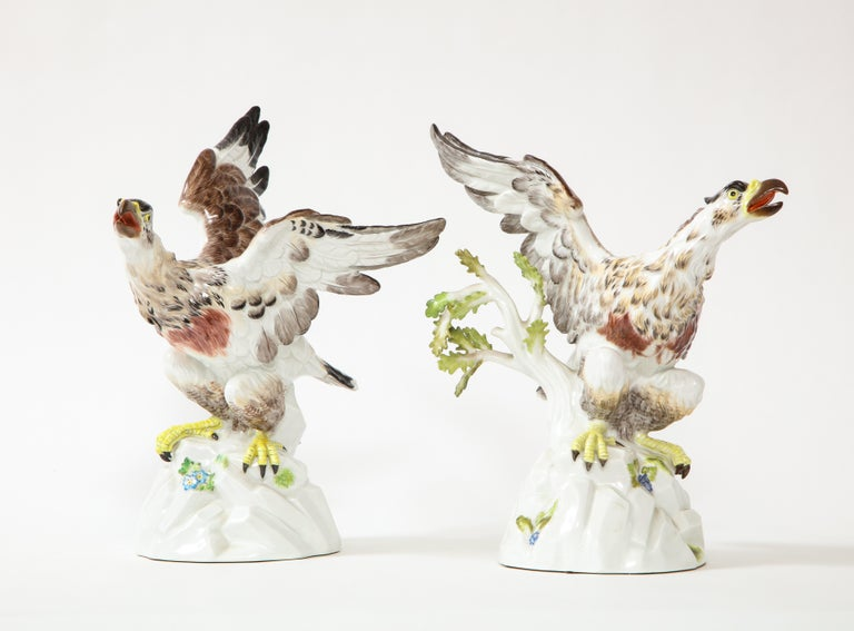 20th Century Fine Pair of Meissen Porcelain Models of Eagles Resting on Branches For Sale