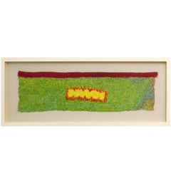 Framed Pre-Columbian Feather Loincloth