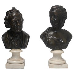 French 19th Century Pair of Bronze Busts
