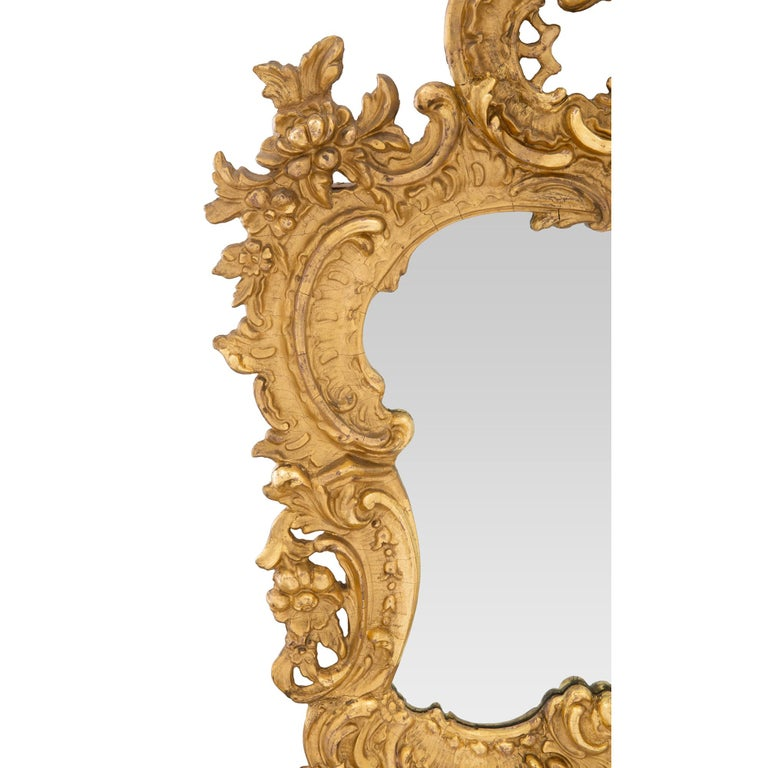 19th Century A French 19th century Rococo st. giltwood mirror For Sale