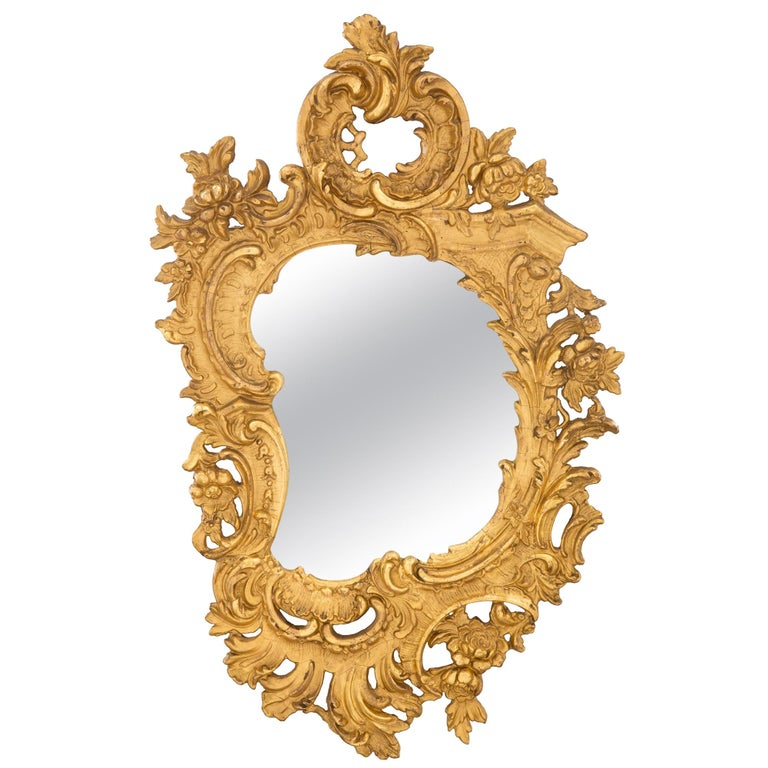 A French 19th century Rococo st. giltwood mirror For Sale