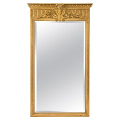 French Mid-19th Century Louis XIV Style Giltwood Mirror