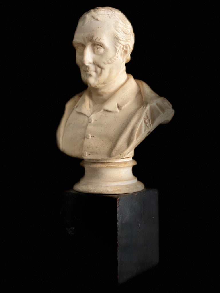 Late 19th Century Plaster Bust of the Duke of Wellington 6