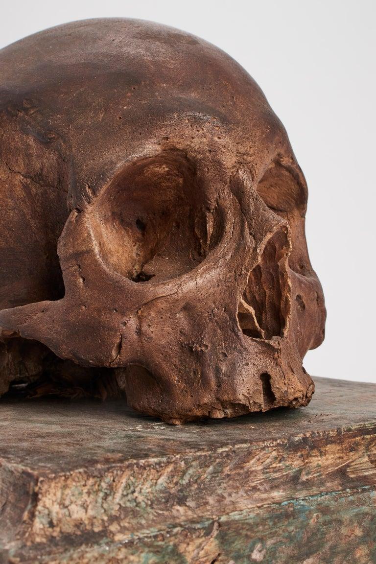 Italian Memento Mori Skull, Italy, 1870 For Sale