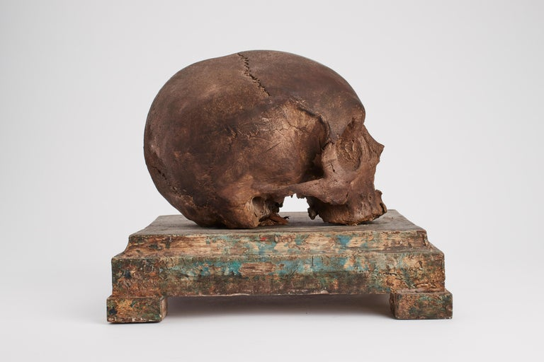 Memento Mori Skull, Italy, 1870 In Excellent Condition For Sale In Milan, IT