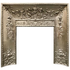 Mid-19th Century French Cast Iron Foliate Fireplace Insert