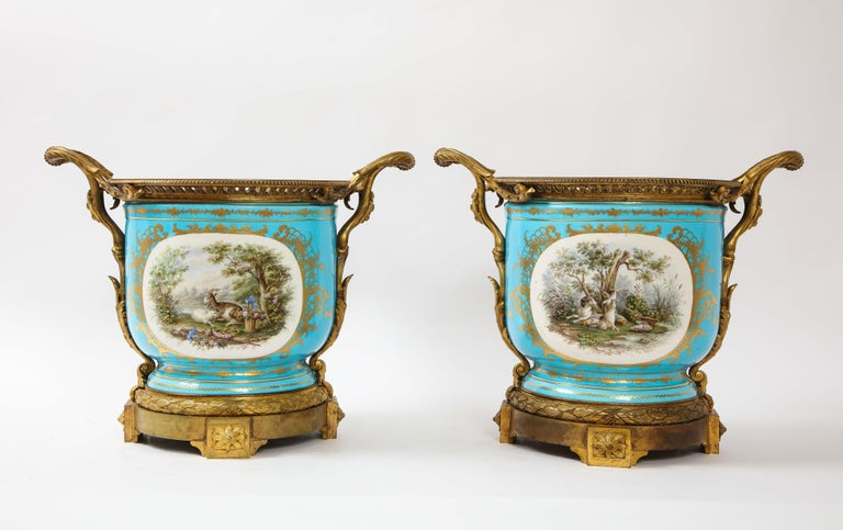 A monumental and rare pair of 19th century French dore bronze mounted Sèvres Celeste blue porcelain cachepots. These cache pots are extremely rare to find in this monumental size. Each is hand painted in a celest blue ground with two sides of
