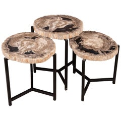 Nest of Three Petrified Wood 'Fossil' Tables on Black Metal Bases