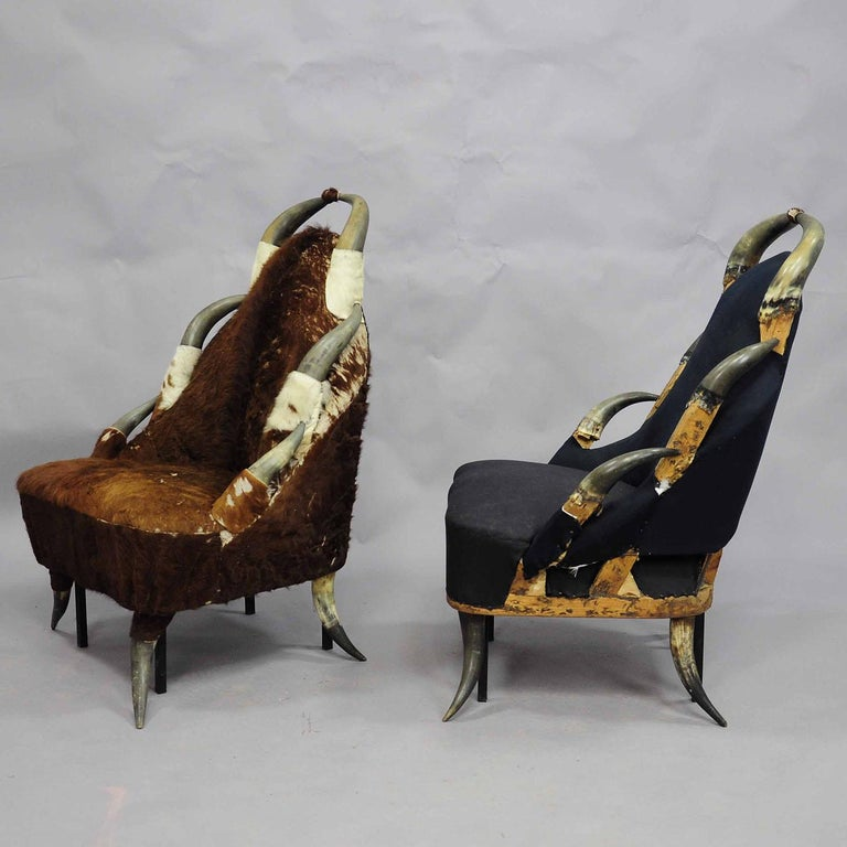 A pair large bull horn chairs circa 1870, one covered with vintage cow coat which has to be renewed (is loosing the hairs), the other without cover. Iron legs added to improve stability. Manufactured in Austria circa 1870.   Please contact us for an