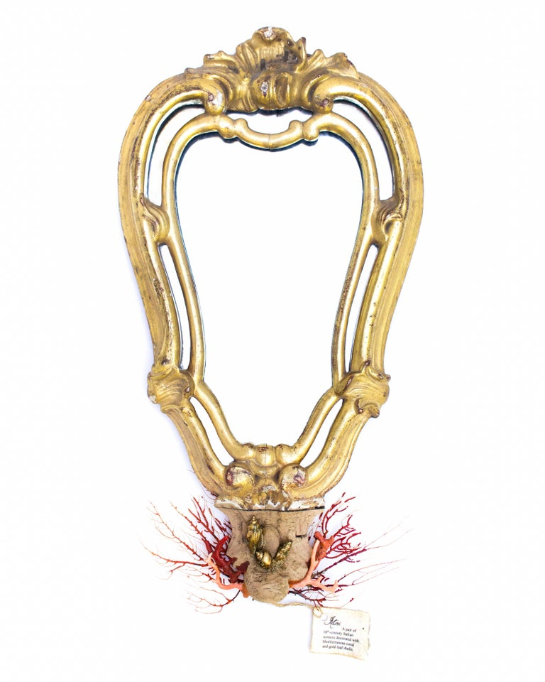 A pair of 18th century Italian mirrors decorated with Mediterranean coral, sea whips, and gold leaf shells applied onto the carved wood bases of the mirrors. The virgin wood was applied at a later date. The decoration enhances the overall decorative