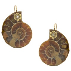 A Pair of Ammonite Earrings