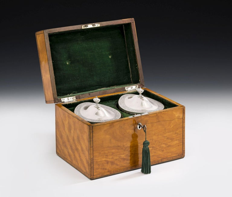 Pair of Cased George III Tea Caddies Made in London in 1793 by William Frisbee In Good Condition For Sale In London, GB