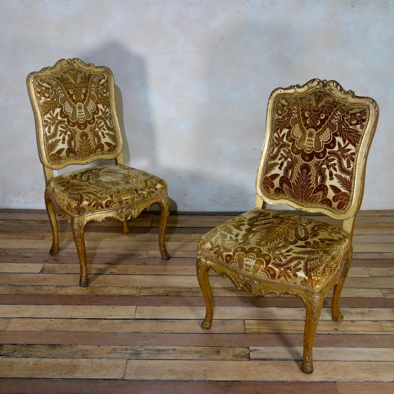 A pair of early 18th century Louis XV chairs.  Displaying carved walnut giltwood frames that have worn beautifully over the years  - featuring shaped padded backs and seats within foliate carved frames and shell decoration throught.    Upholstered