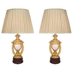 Pair of 19th Century Louis XVI Style Ormolu, Bronze and Faux Marble Lamps