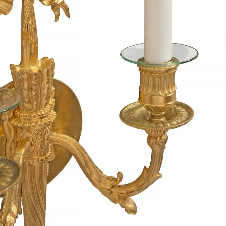Pair of French 19th Century Louis XVI Style Two-Arm Ormolu Sconces For Sale 2
