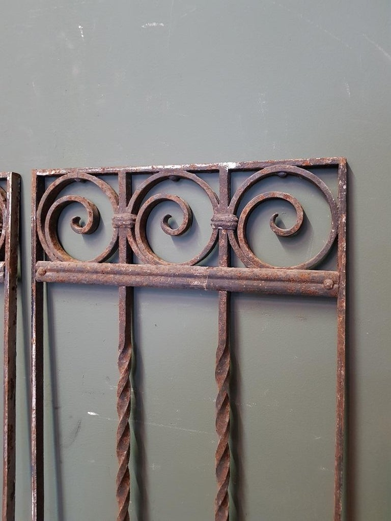 Pair of French Wrought Iron Door Grilles from the 1st Half of the 20th Century 1
