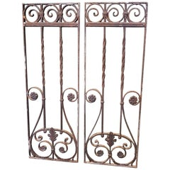 Pair of French Wrought Iron Door Grilles from the 1st Half of the 20th Century
