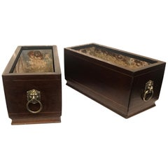 Pair of Georgian Style Mahogany Lined Box Planters