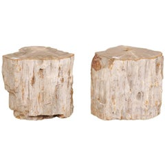 Pair of Light Toned Cream Colored Petrified Wood Side or Drink Tables