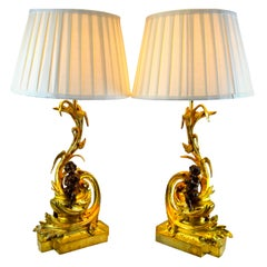Pair of Louis XV Style Gilt and Patinated Bronze Fireplace Chenet Lamps